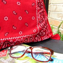 If you can tie a knot then you can make a pile of these no sew bandana pillows.