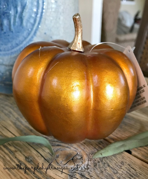 DIY Fall Painted Pumpkins are an easy way to add early autumn touches to your home to match your color scheme.