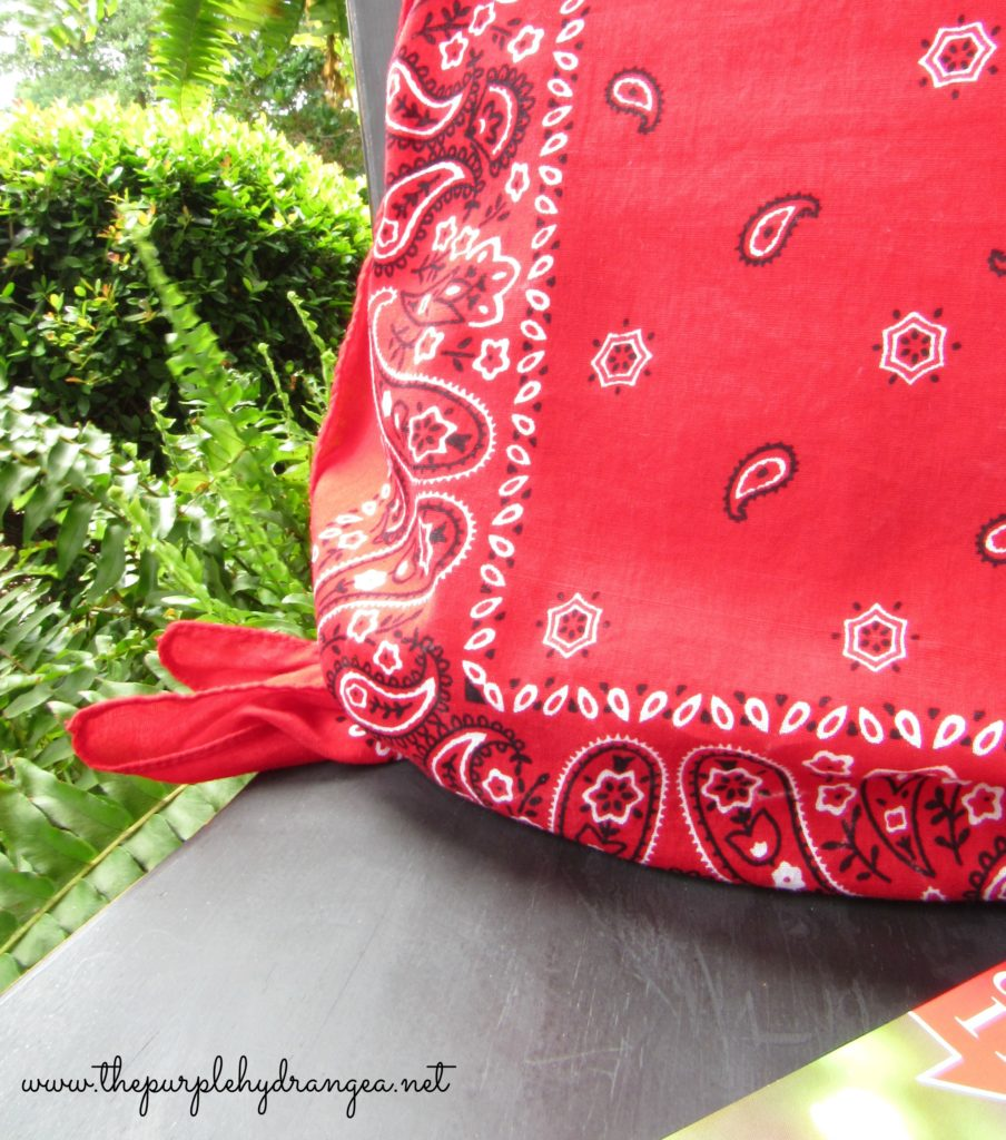 If you can tie a knot, then you can make a whole pile of no sew bandana pillows.
